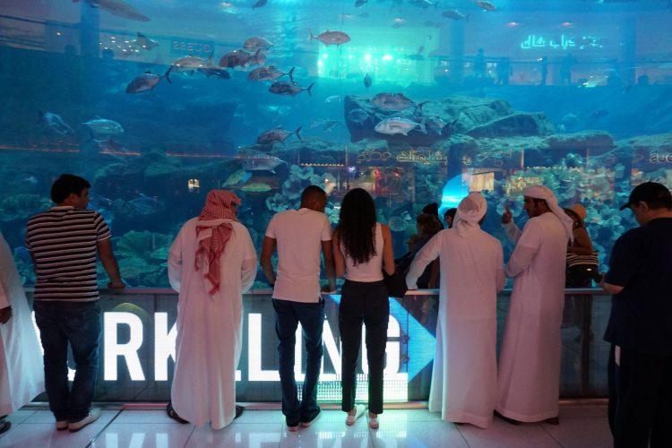 Dubai Aquarium en Zoo
